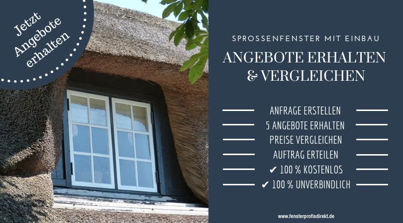 Dänische Fenster Einbau